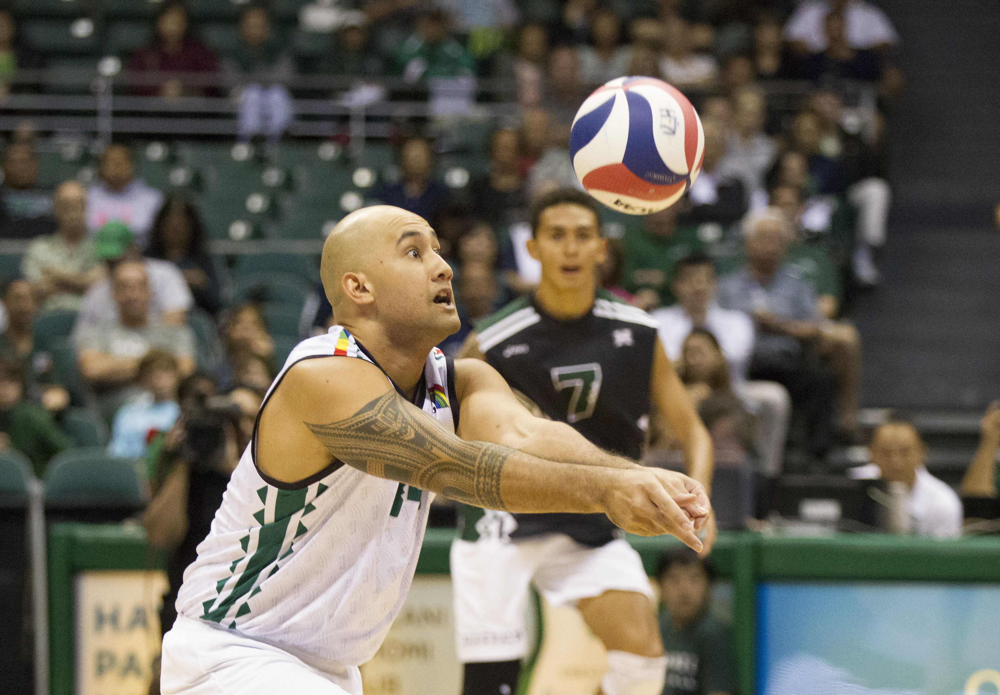 Hawaii outside hitter Larry Tuileta (14) made a dig in the second set of the Outrigger Resorts Invitational match against the Princeton Tigers held on Friday.